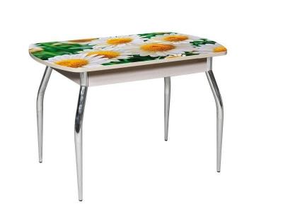 Стол обеденный Грация раздвижной со стеклом с фотопечатью Ромашки